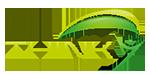 ThinkY-Logo